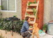 Easy DIY Planter Ladder Living Wall!