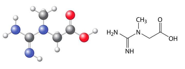 Fórmula química de la creatina
