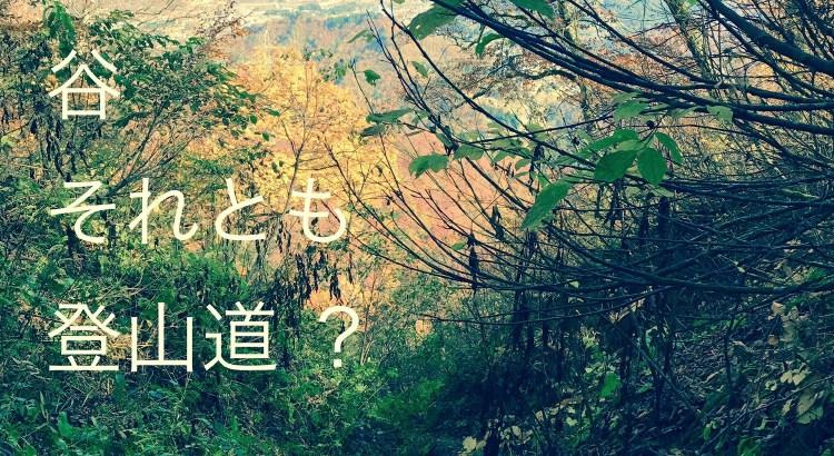 谷か登山道か