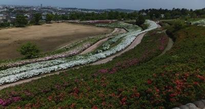 大乗寺丘陵公園2