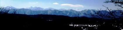 2杉林遠望