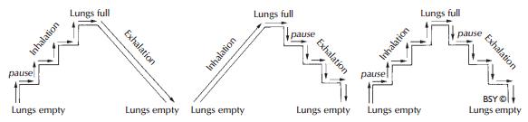 Texte de remplacement généré par une machine: Lungs full Lungs empty Lungs full r Lungs empty Lungs empty Lungs empty