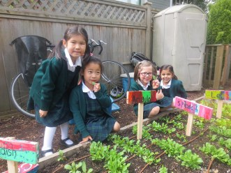 Little School Garden