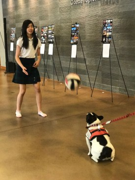 PuppyTherapy_09May2018-5462