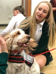 PuppyTherapy_09May2018-5483