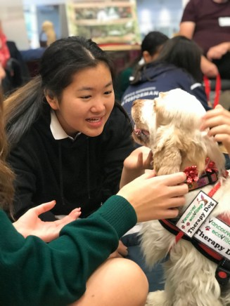 PuppyTherapy_09May2018-5486