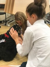 PuppyTherapy_09May2018-5497