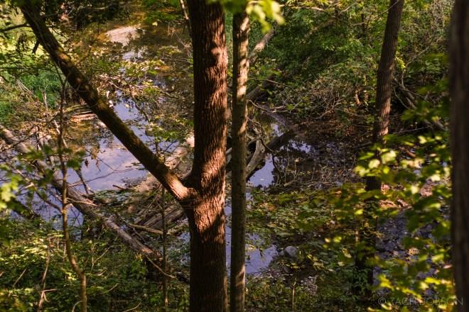 Flat Fork Creek Park Fishers Indiana