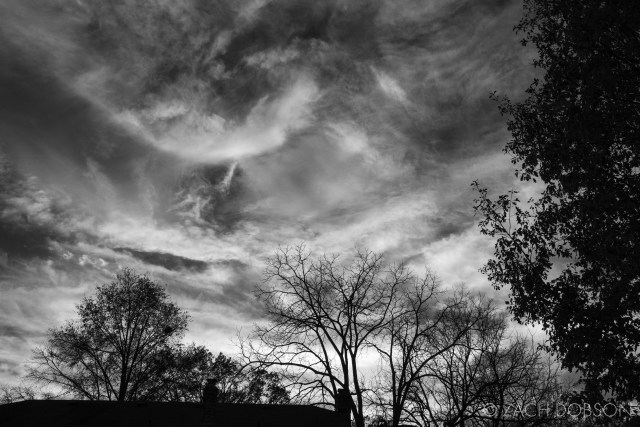 cloudy sky in spring in black and white