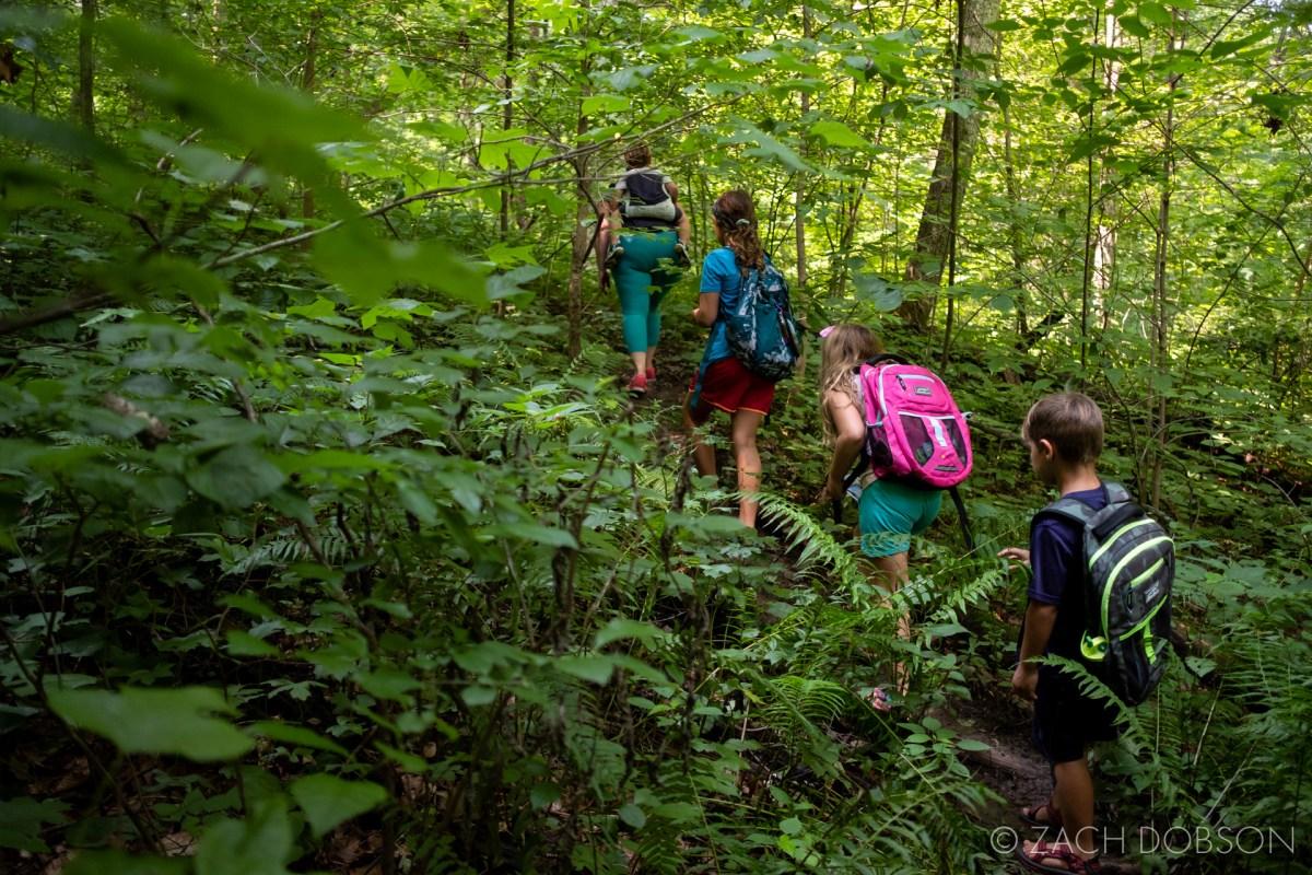 mccormicks creek state park spencer indiana trail