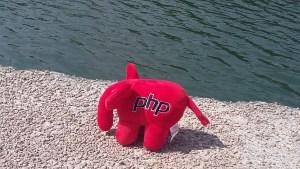 Elephpant au bord de l'eau