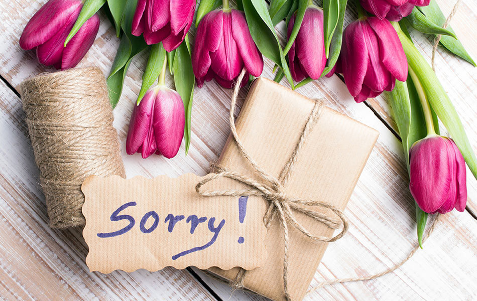 Flowers: The Best Way to Say 'Sorry'