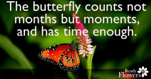 Time enough