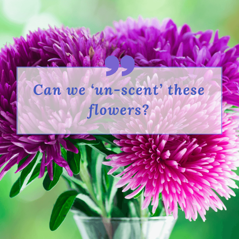 """""""Can we 'un-scent' these flowers?"""""""