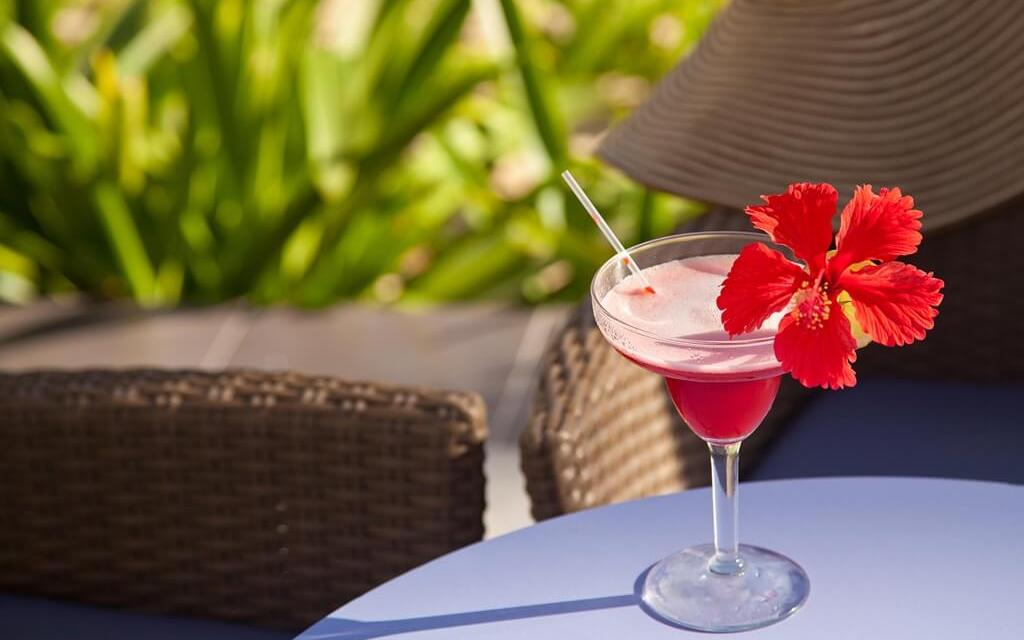 8 Flower Beverages You Need to Try Right Now