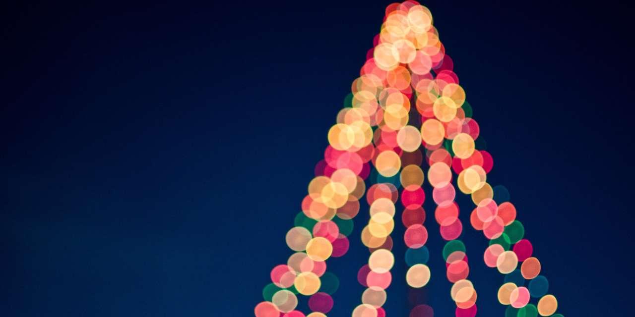 10 Pretty Flower Arrangements for Any Celebrations on December