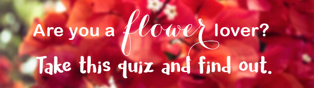 Are-you-a-flower-lover-