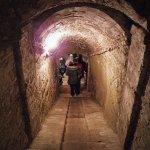 cantina FILEminimizer - Viaggio attraverso i segreti di Montefoscoli fino al tempio di Minerva Medica