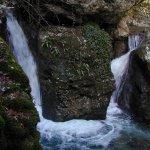 P1010273 - Candalla, il cuore verde dei monti del Camaiorese.