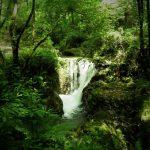 P6080211 e1465522782225 - Candalla, il cuore verde dei monti del Camaiorese.