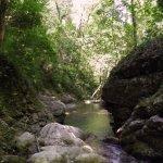 P6270076 - Candalla, il cuore verde dei monti del Camaiorese.