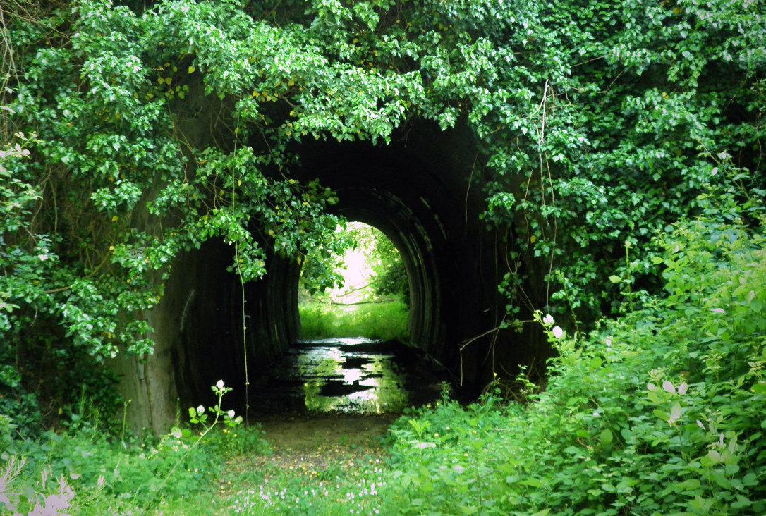La vecchia ferrovia sotto il fiume