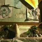 fate FILEminimizer - Tra leggende e esploratori alla scoperta della Collezione DeBenedettis - Alpini