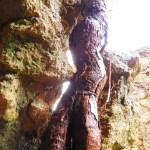 radice - La casa stregata di Pomarance
