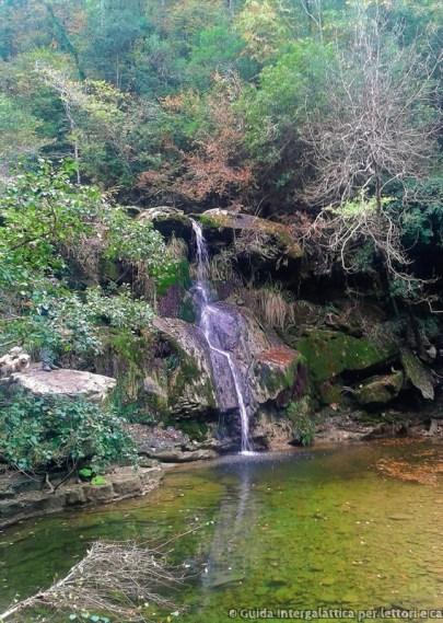 cascata 1 - La foresta dei mille occhi ovvero Caselli e la cascata dello Sterza