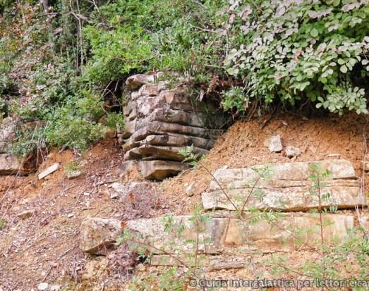 case nascoste - La foresta dei mille occhi ovvero Caselli e la cascata dello Sterza