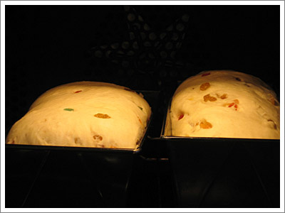 brood_tijdens.jpg