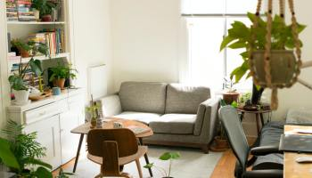An apartment living room filled with plants, books and natural lighting. A great example of cheap life hacks to make an apartment cozy.