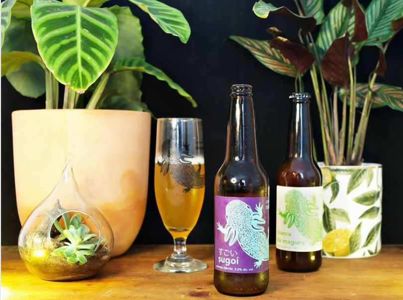 cervezas artesanales a domicilio
