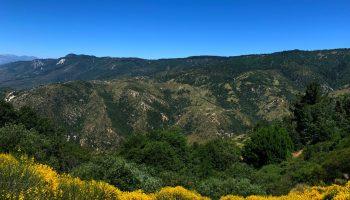 San Bernardino nature