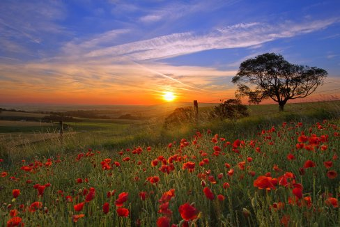 lever de soleil campagne-2