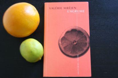 Traitement du langage chez Valérie Mréjen - l'agrume