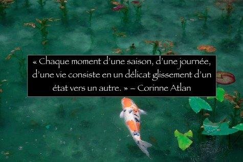 Rencontre Corinne Atlan - poisson qui nage