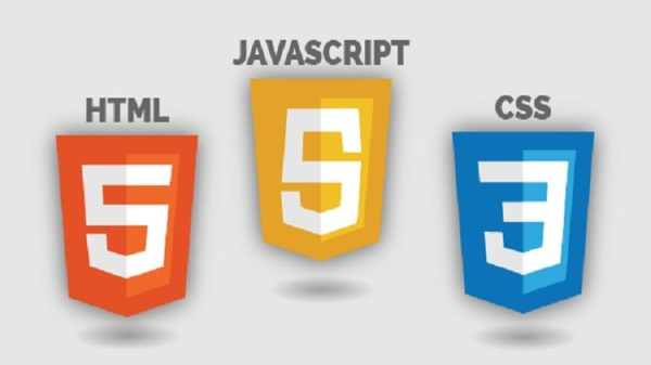 What Is the Main Type of HTML 5 Input Types?   Blogaton.in