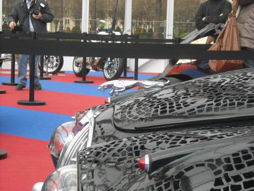 Exposition Concept Cars 2013 (66)