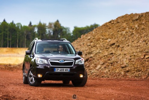 Forester 02