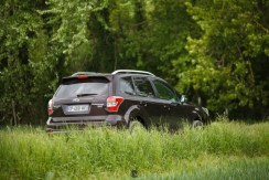 Forester 03