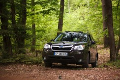 Forester 04