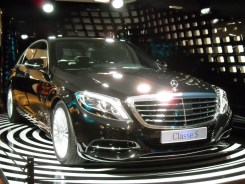 Mercedes Gallery Fascination (7)