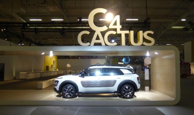 C4 Cactus E3 01