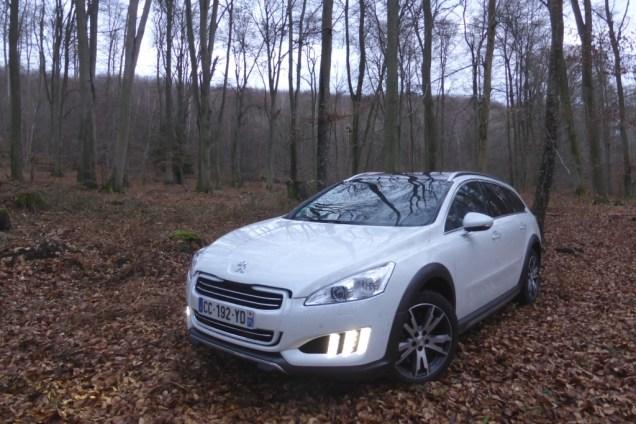 Peugeot 508 RXH W24 verliert sich im Wald