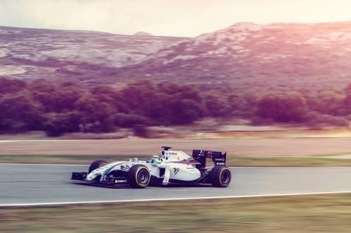 Williams-FW36-Martini-7