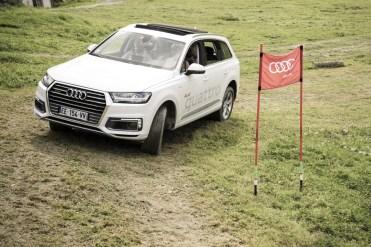 rallye-audi-sport-2016-quattro-25