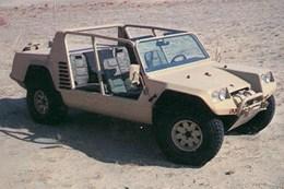 Cheetah - 06