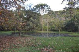 Parque Estadual de Campos do Jordão e Horto Florestal