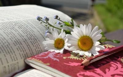 本を読んで洗練されたボキャブラリーを増やす